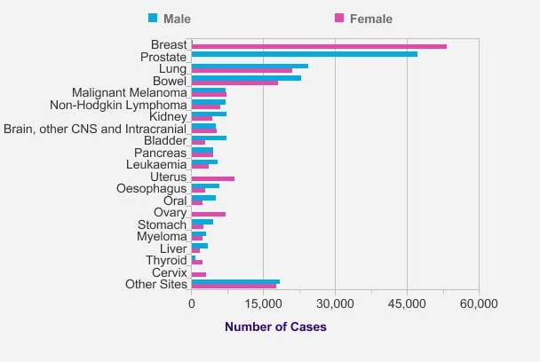 bladder cancer statistics