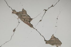 cracks, damp, mould or leaks