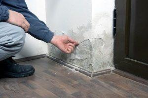 Council housing complaints