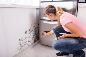 housing association complaints claims
